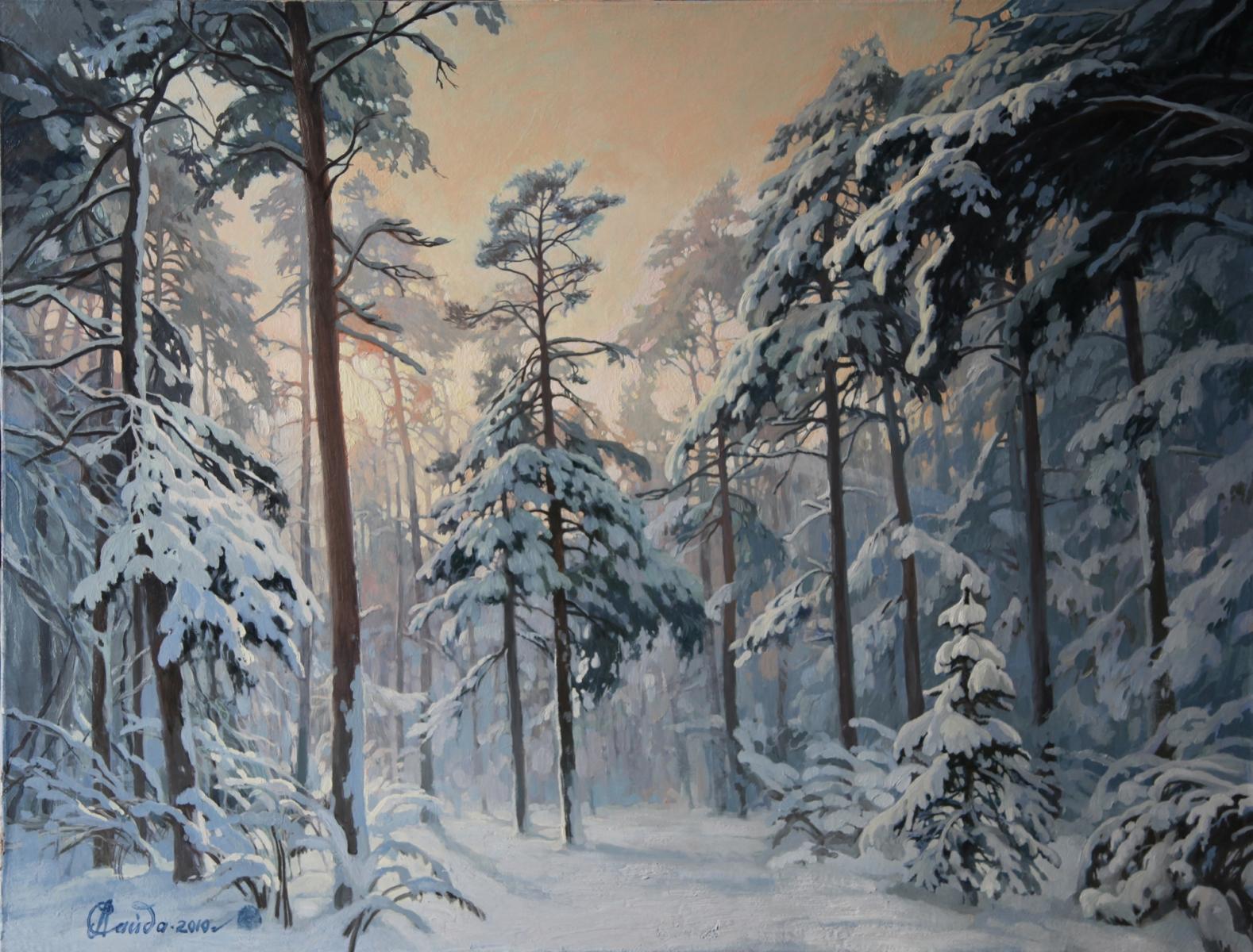 Зима в Малаховке